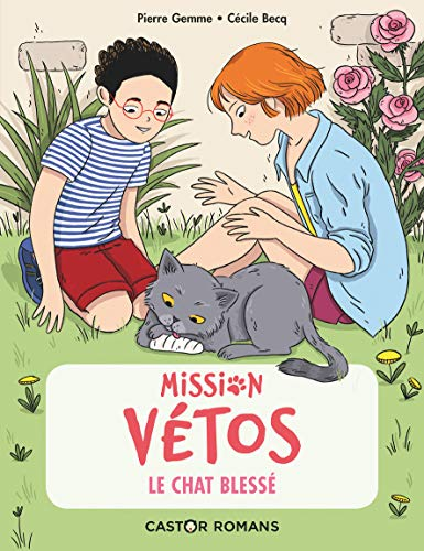 MISSION VÉTOS - LE CHAT BLESSÉ